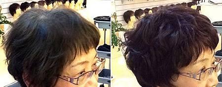 假髮遮白髮 (4).jpg