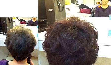 假髮遮白髮 (3).jpg