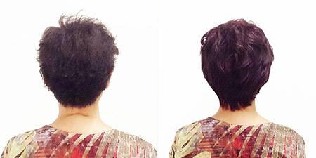 醫療假髮4.jpg