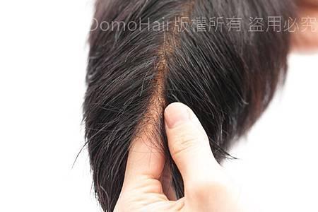 DomoHair科技假髮.jpg