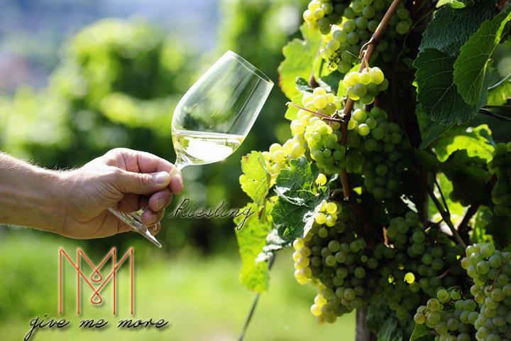 blog size 720x480品酒新手必知的七大葡萄酒品種 Riesling.jpg