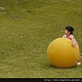 110814 (067) 球比 Tinnie 還要大.JPG