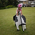 110814 (082) 騎乳牛也要戴安全帽.JPG