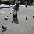 110313 (03) 餵鴿子.JPG