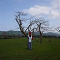 110410 (033) Tinnie 上樹.jpg