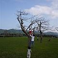 110410 (034) Bernie 趕快過去  也想要上樹啦.jpg