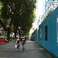 110810 (031) 大樹林立的新加坡街景.jpg