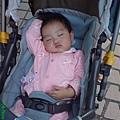 08110601 睡得好香喔!!.JPG