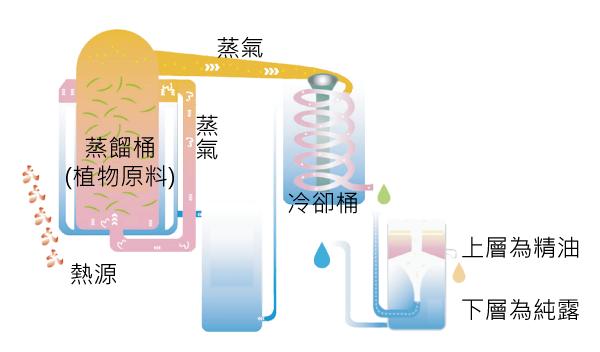 蒸餾圖.png