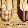 kashin2198-img600x307-1223215469430169___04207-5.jpg