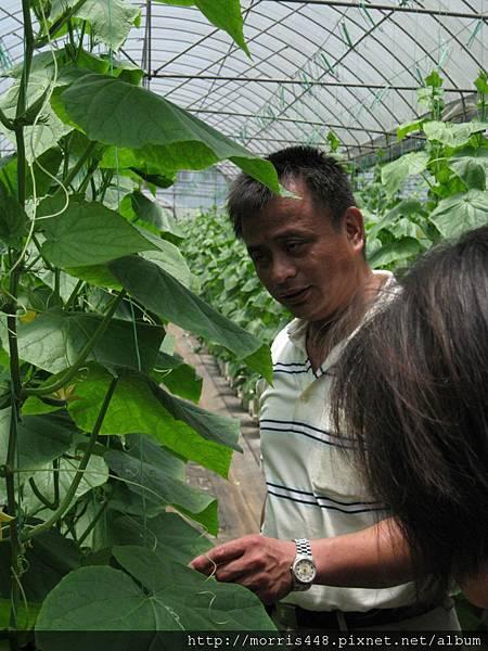 0711台灣植物工廠產業協會---金勇DIY蕃茄農場參訪&研討會 008