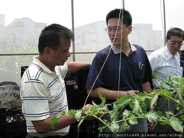 0711台灣植物工廠產業協會---金勇DIY蕃茄農場參訪&研討會 022