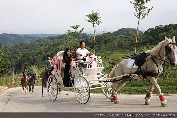 北台灣牛樟園馬車婚禮2