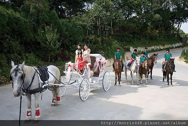 北台灣牛樟園馬車婚禮