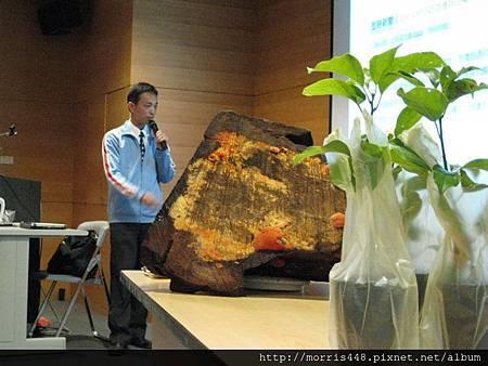 台灣力晶科技牛樟產業講座2