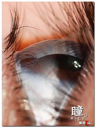 瞳Micro-2.jpg
