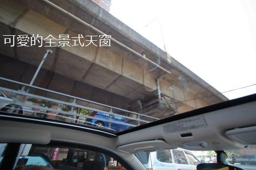 東大路橋下可愛的全景式天窗.JPG