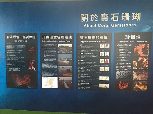 綺麗珊瑚@台東機場內候機室(台東航空站提供)