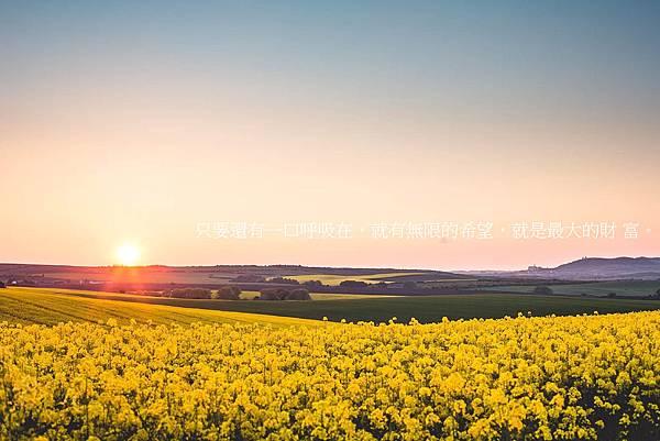 只要還有一口呼吸在,就有無限的希望,就是最大的財 富。.jpg