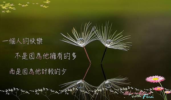 一個人的快樂不是在他擁有的多而是計較的少