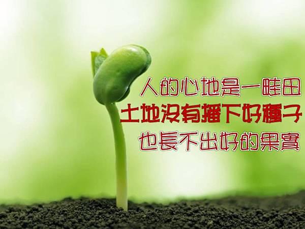 人的心地是一畦田土地沒有播下好種子也長不出好的果實