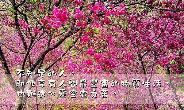 不知足的人,即使享有人間最豐富的物質生活,也難遣心靈空虛之苦。