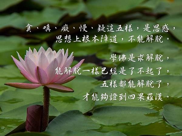 貪、嗔、癡、慢、疑這五樣,是思惑,思想上根本障道,不能解脫。學佛是求解脫,能解脫一樣已經是了不起了,五樣都能解脫了,才能夠證到四果羅漢。