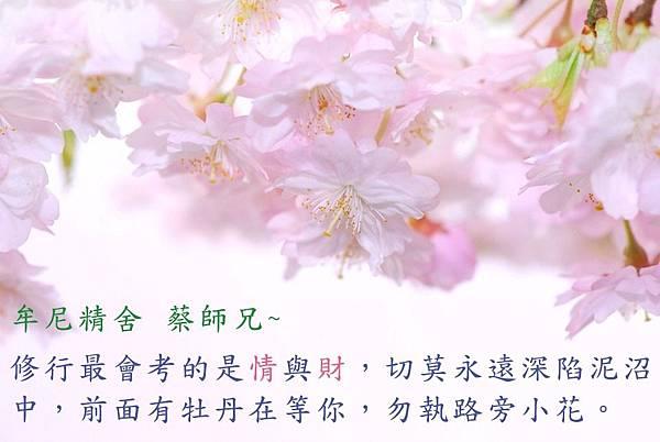 牟尼精舍 蔡師兄_170717_0003.jpg