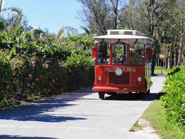 bus-沖繩自由行景點-沖繩景點推薦-親子-海中展望塔巴士