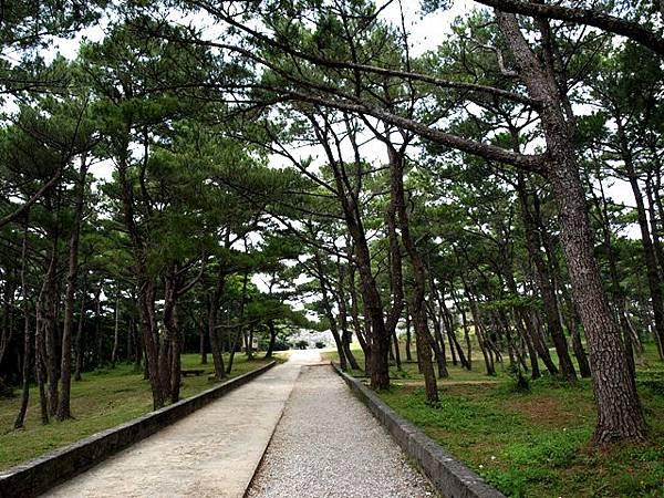 castle2-沖繩自由行景點-沖繩景點推薦-親子自鴐遊-座喜味城跡