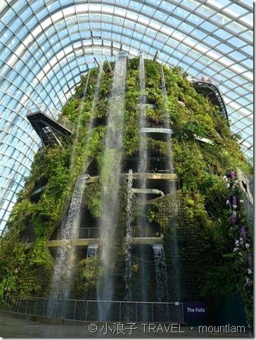 新加坡【行程】4天3夜自由行遊記行程攻略-景點-Gardens by the Bay濱海灣花園
