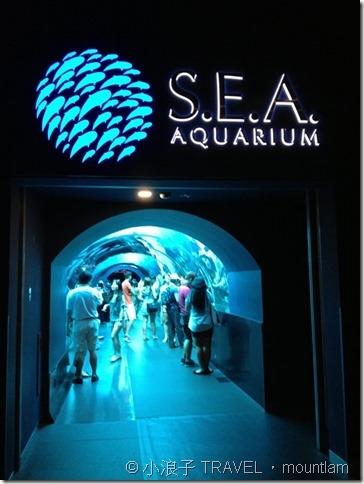 新加坡行程4天3夜自由行遊記行程攻略-親子遊-景點-聖淘沙海洋館