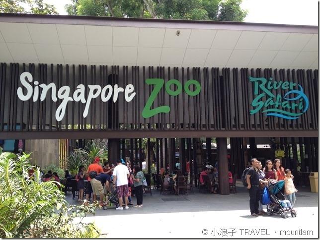 新加坡行程4天3夜自由行遊記行程攻略-親子遊-景點-動物園