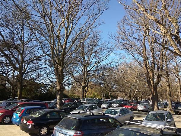 christchurch景點– Hagley Park海格利公園parking