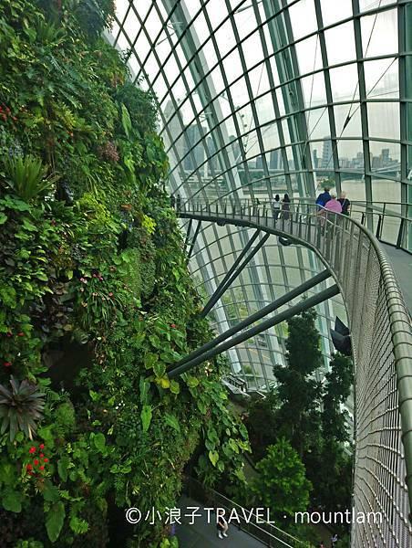 新加坡行程_景點推薦:濱海灣花園gardens by the bay4