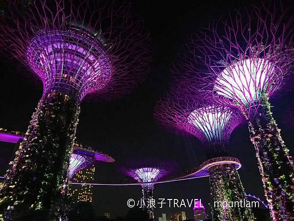 新加坡行程_景點推薦:濱海灣花園燈光表演