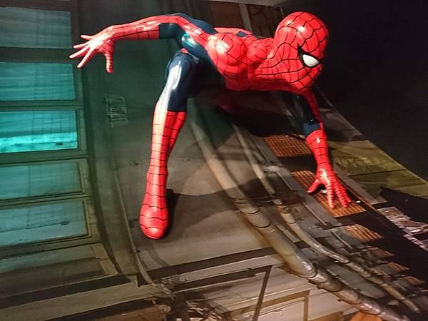 香港杜莎夫人蠟像館_Spiderman