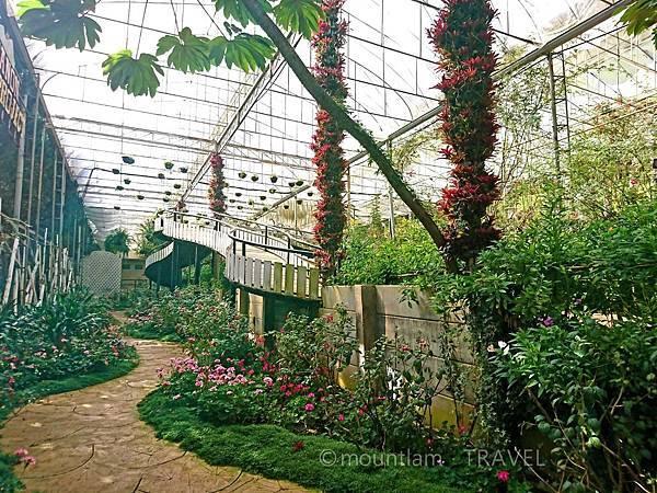 清邁茵他儂國家公園一日遊 皇家項目研究站(Royal Agricultural Station Inthanon)及植物園