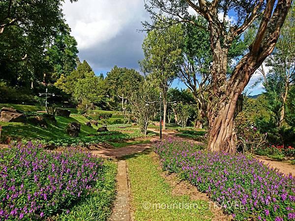 清邁茵他儂國家公園一日遊 皇家項目研究站(Royal Agricultural Station Inthanon)及植物園2