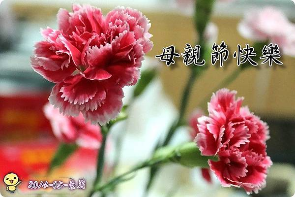 祝母親節快樂