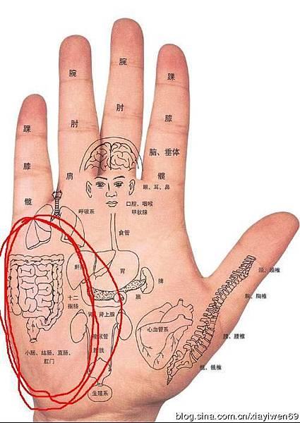 02.jpeg强肾防癌 常按小拇指竟有四大神奇特效