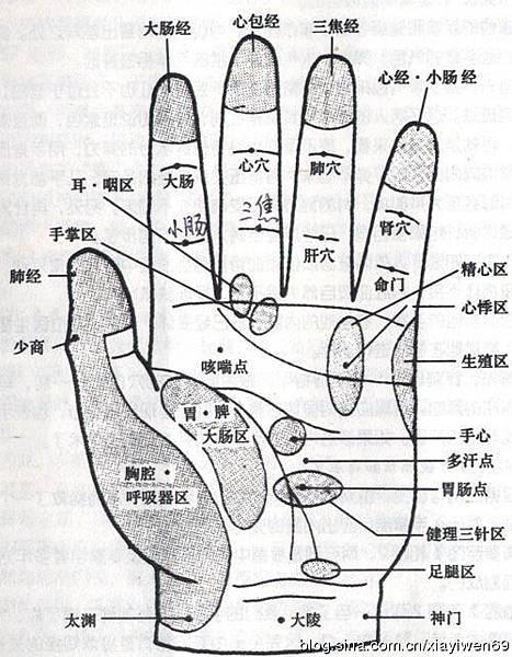 04强肾防癌 常按小拇指竟有四大神奇特效