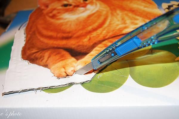 貓咪立牌DIY