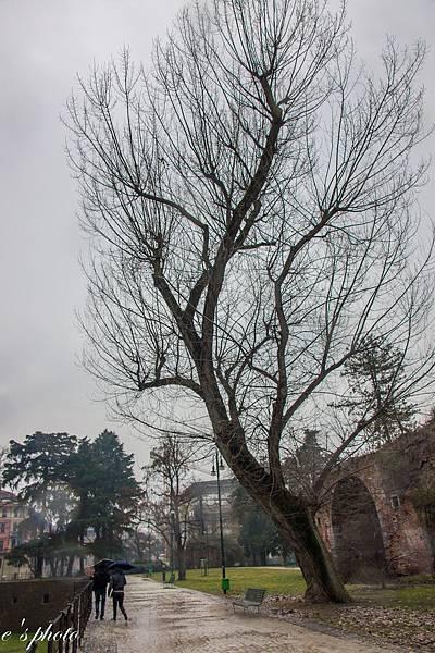 斯福爾扎古堡