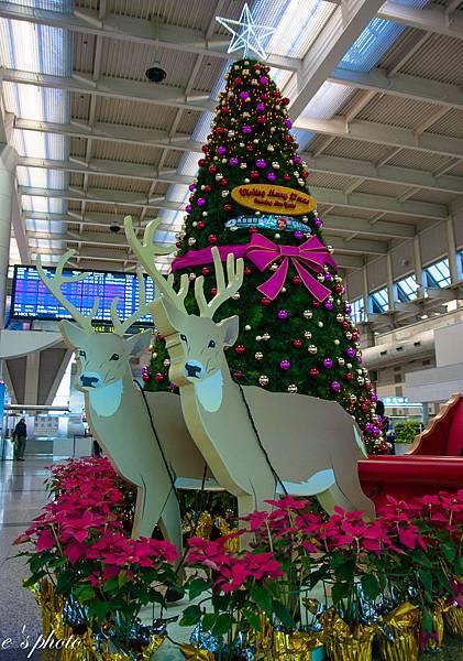 『日本自由行』東京 聖誕節 五天四夜 淺草寺 雷門 仲見世通 大黑家