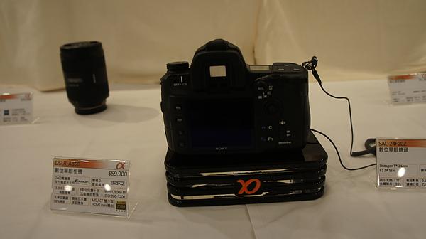 DSC1703.JPG
