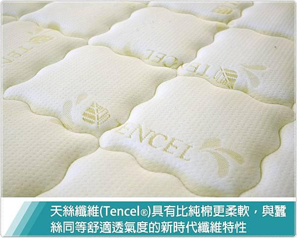 乳膠防過敏獨立筒床墊6.