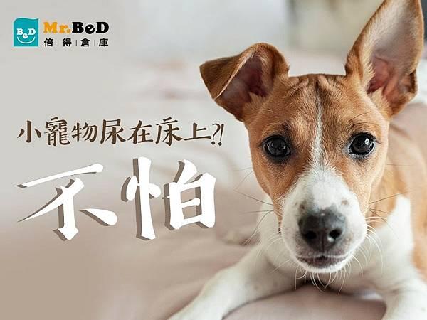 寵物床包推薦