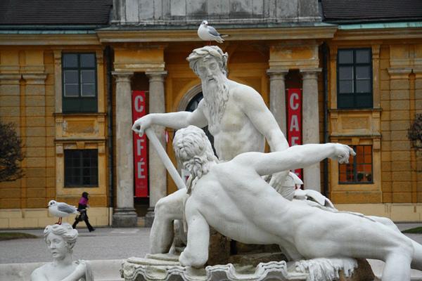 奧地利維也納熊布朗宮的鳥01
