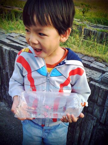 Todd & 6隻水晶小蝦蝦 & 50隻彩虹小小魚04.jpg